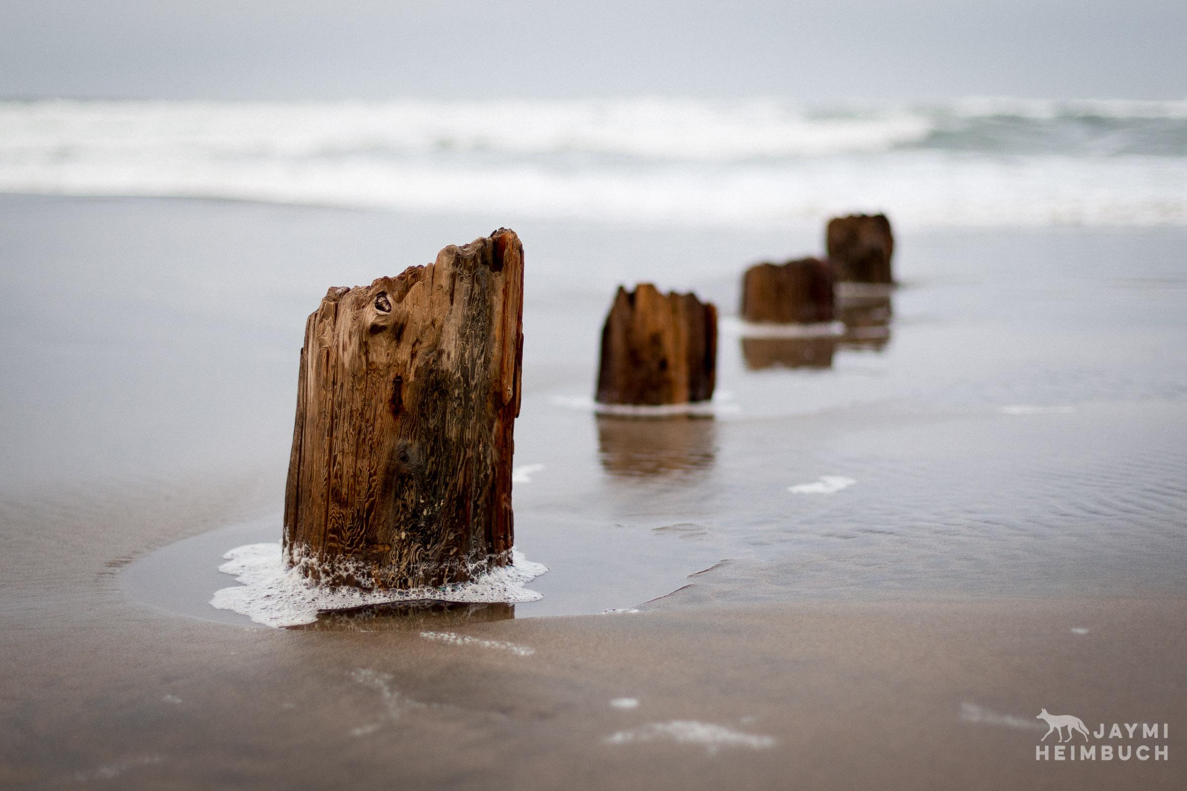 pier pilings in beach sand