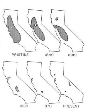 tule elk historic distribution map